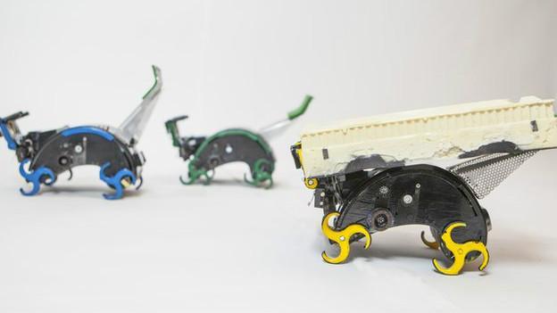 termtias-robots-2