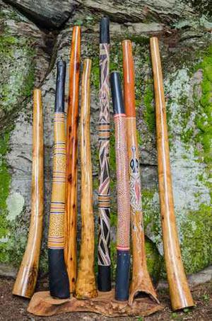 instrumento termitas didgeridoo