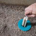 Los cebos para el control de plagas de termitas bajo examen