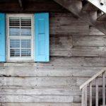 ¿Por qué salen las termitas en un hogar?